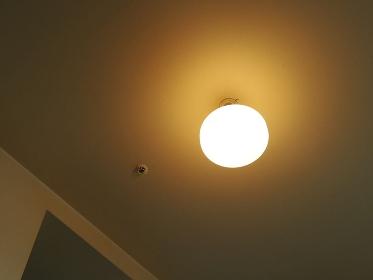 リビングルームの天井の白熱電灯