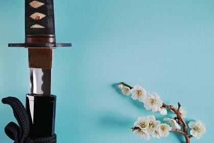 青い背景に少し抜いた日本刀と白い花が咲いた梅の枝