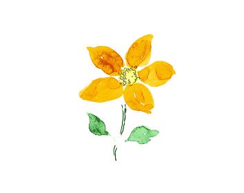 手描きイラスト素材 植物・花, 植物, 花, オレンジ