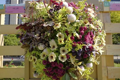 日比谷公園に飾られた花