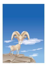 崖の上にいる山羊