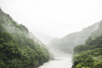悪天候で雲のかかる山と濁流の川