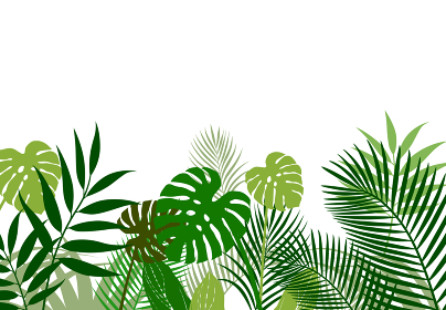 熱帯植物の葉 背景素材