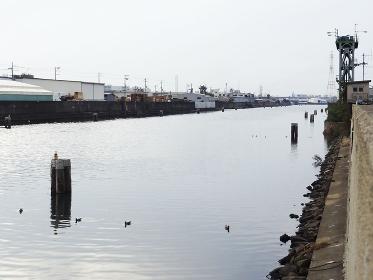 河口の低い堤防