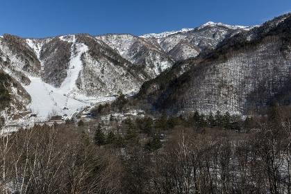 平湯峠トンネルを出た平湯スキー場の景観
