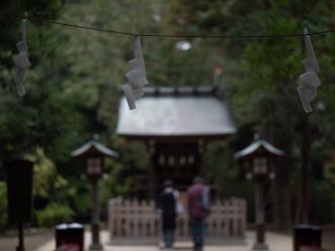 日本の神社の風景 氷川神社の紙垂 埼玉県さいたま市