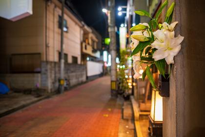 小倉中心街の横丁飲み屋街