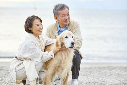 海辺で犬の散歩をする日本人シニア夫婦