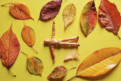 黄色い紙の上に置いた複数の落ち葉と木製の人形。秋のイメージ。
