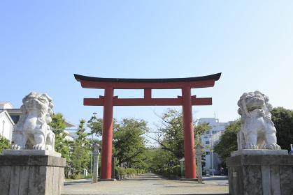 鶴岡八幡宮二の鳥居 狛犬