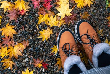 足元と落葉 秋のコンセプト