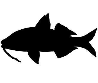 魚のオジサンのシルエット