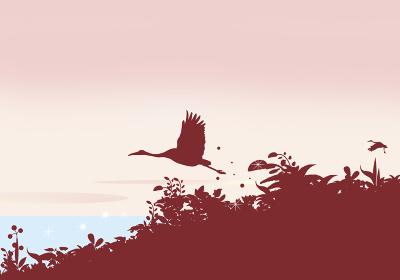 夜明けの鶴