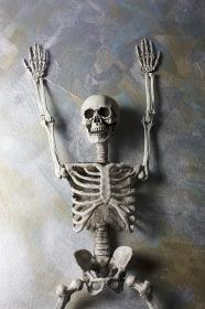 横になった骸骨