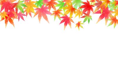 秋、色とりどりのもみじ 横フレーム
