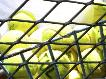 かごに入れたテニスボール