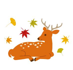 鹿と秋の紅葉 イラストセット
