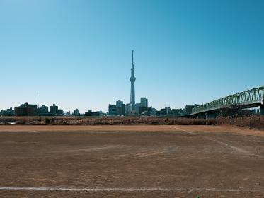 河川敷の野球場とスカイツリー