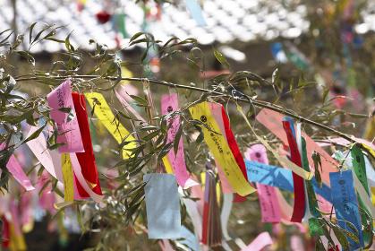 機物神社の七夕祭り