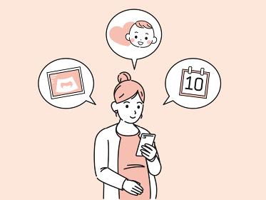出産予定日の確認をする妊婦 エコー検査 妊娠週数 イラスト素材