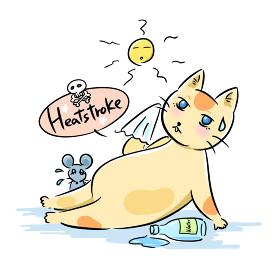 夏の太陽と熱中症になりそうな猫