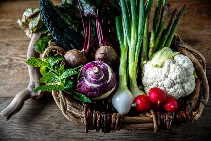 オーガニック野菜の集合写真