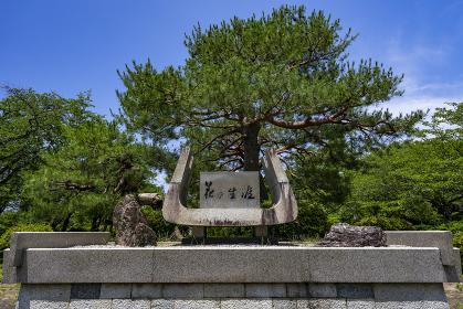 国宝彦根城金亀児童公園 記念樹花の生涯