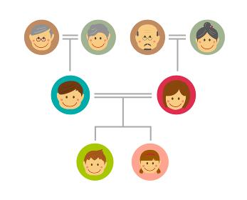 家系図・ファミリー・家族構成 イラスト / 祖父母・二世帯