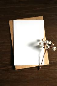 ナンキンハゼの実と白いカード 5 縦位置