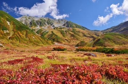紅葉の立山連峰・雷鳥沢