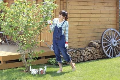 ログハウスのある庭で植物のお手入れをする女性