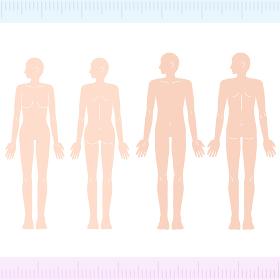 横顔の男性・女性 メディカル 美容 裸 ヌード 全身 正面・背面