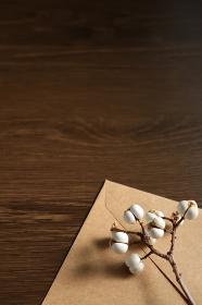 ナンキンハゼの種と封筒 10 縦位置