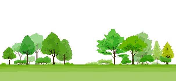 緑豊かな木の風景 イラスト