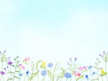 水彩で描く花畑