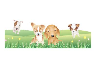 のはらを駆ける4匹の子犬