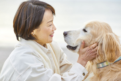 犬と遊ぶ日本人シニア女性