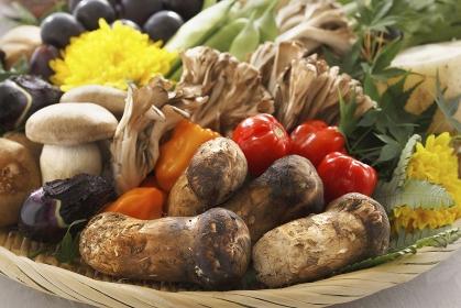 色々な野菜の食材