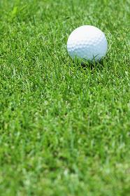 ゴルフボールと芝生