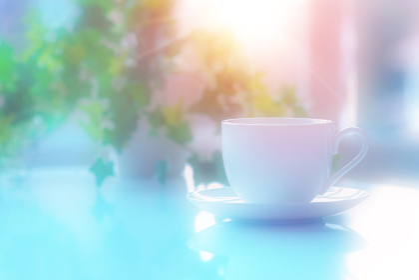 コーヒーカップと観葉植物