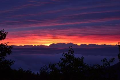 山岳風景 雲海に沈む夕日