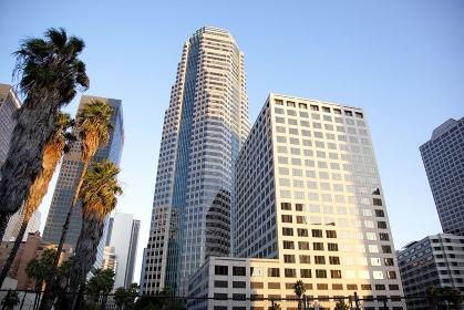 カリフォルニアの高層ビル群