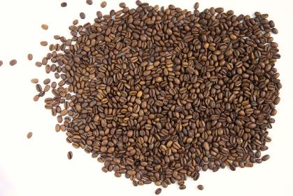 白バックで焙煎したコーヒー豆 ゲイシャ種
