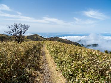 西伊豆 小達磨山登山道からの風景 3月