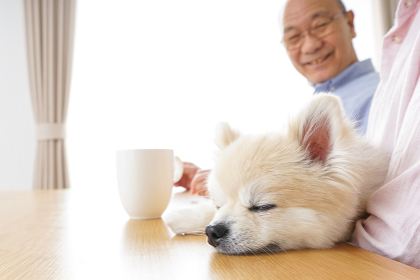 老後をのんびりと暮らすシニア夫婦