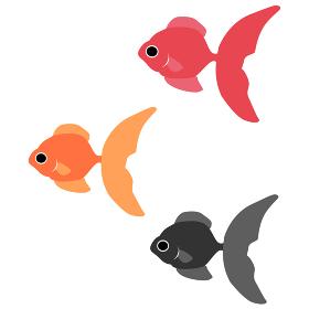 イラスト素材 金魚 金魚すくい 夏祭り 魚 ベクター