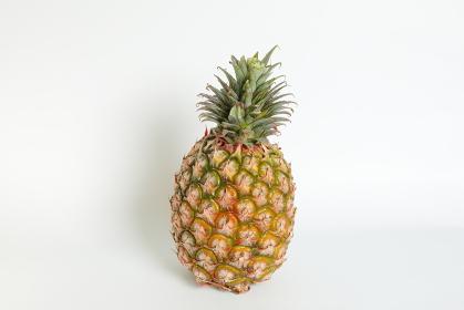 立てた台湾パイナップル