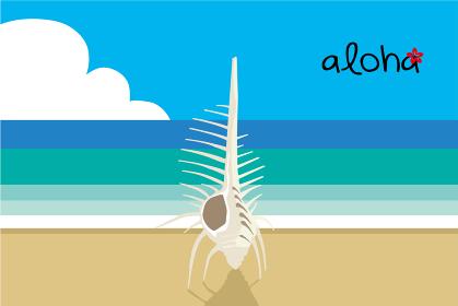 夏のイメージのイラスト|ビーチ砂浜とホネガイのイラスト暑中見舞い用素材