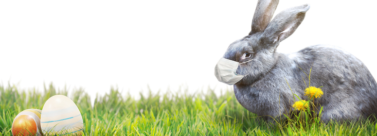 Easter rabbit with medical mask at epidemic time
