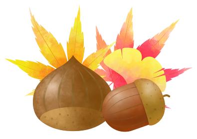 秋、栗と団栗と色づいた葉っぱ 水彩風